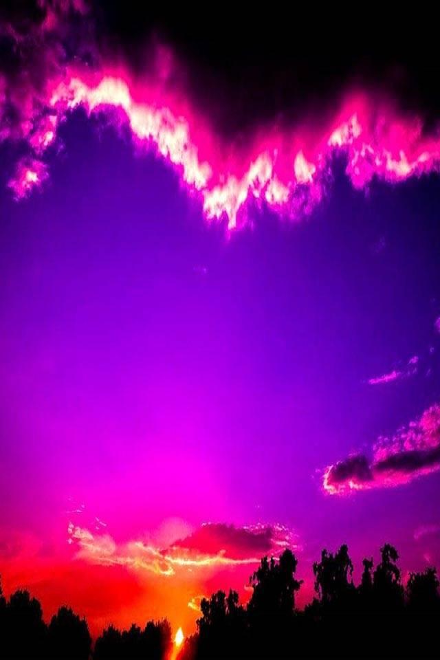 Delight Sunset