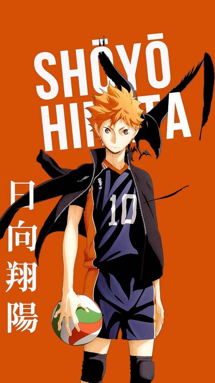 Shoyo Hinata