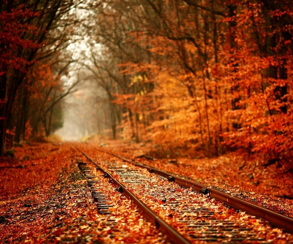 Rust-Coloured Autumn