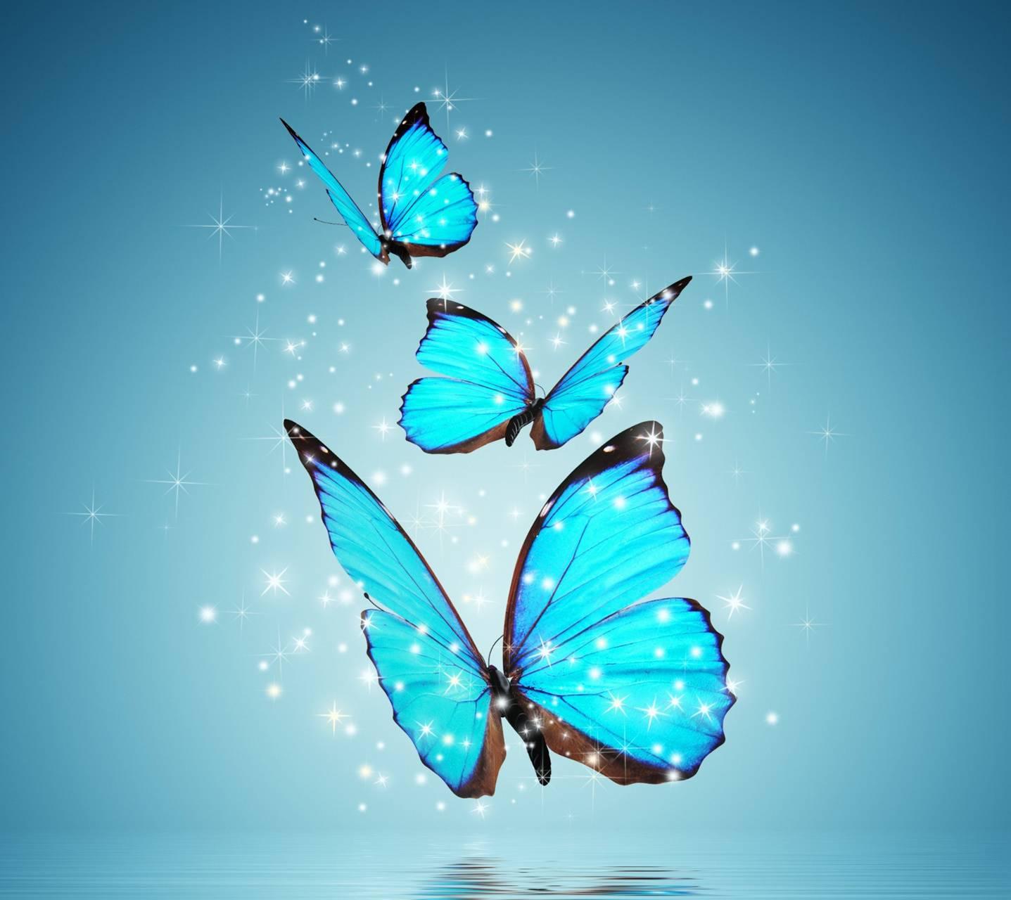 Blue Butterlies
