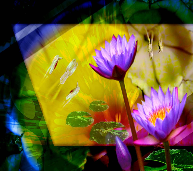 Floral  Lotus