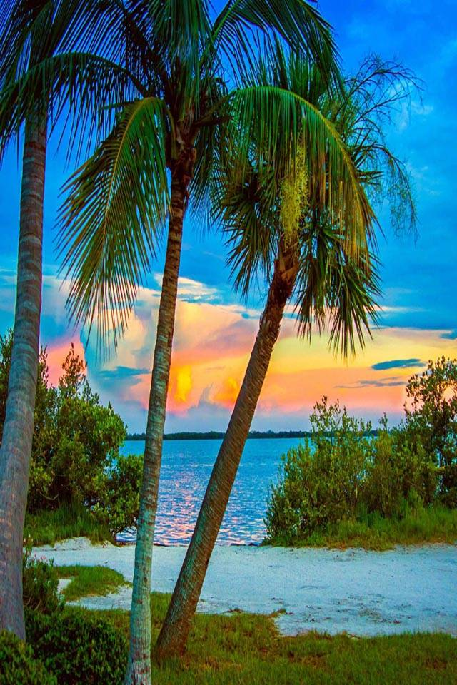 Super Sunset Image