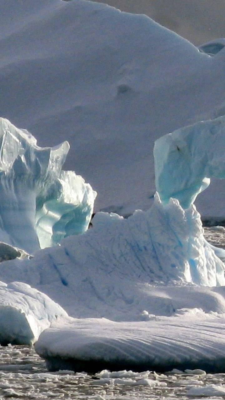 Antarctic