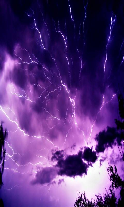 Violet Storm Hd