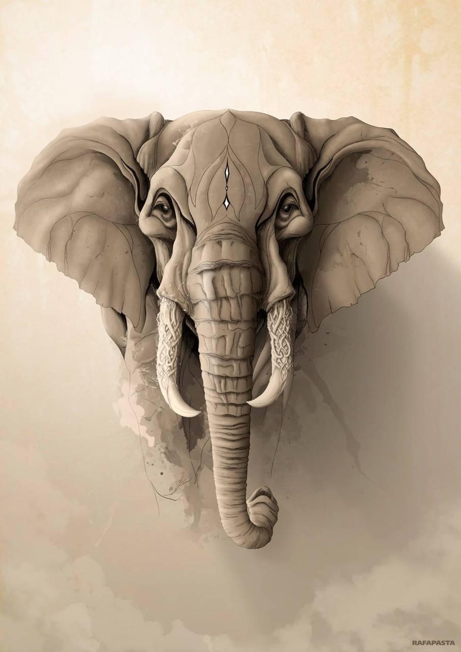 Elephant Paint