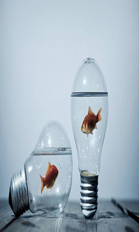 Fish Water Art