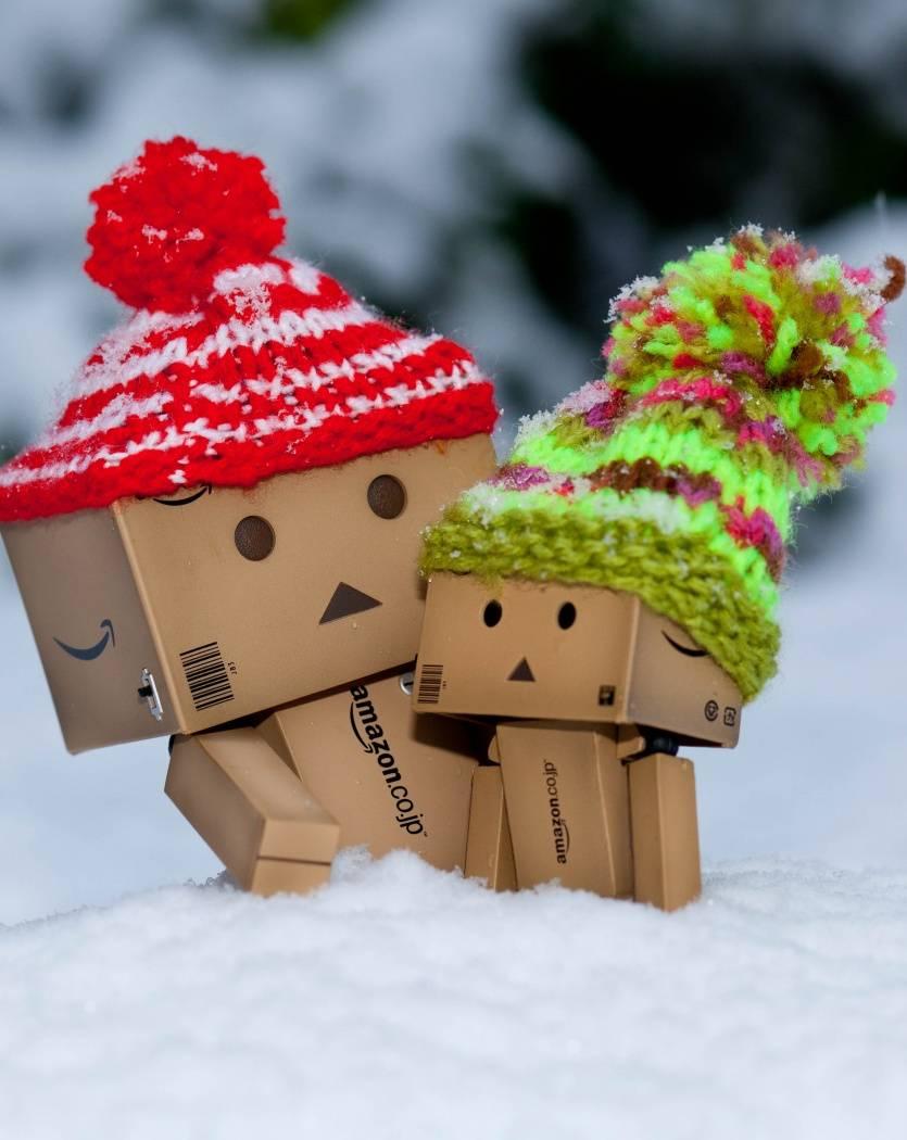 Danbo In Winter