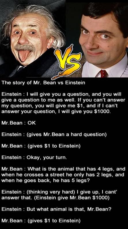 Mr Bean vs Einstein