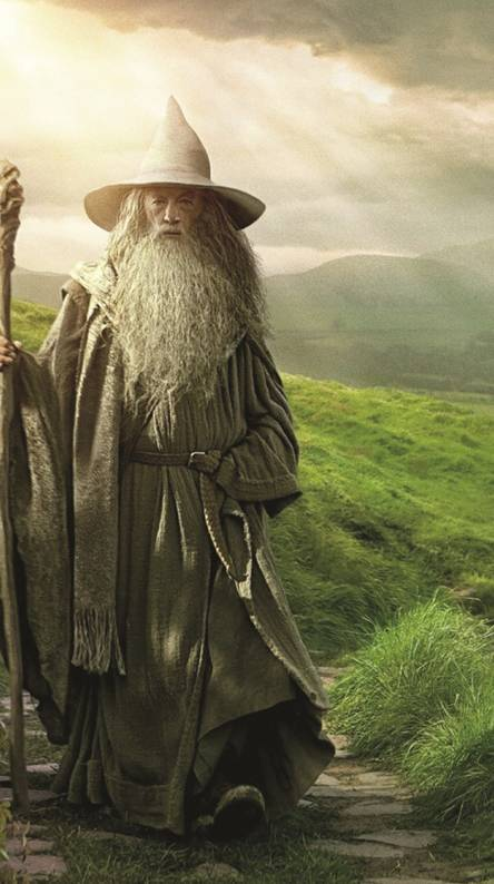 Epic sax gandalf Wallpapers - Free by ZEDGE™