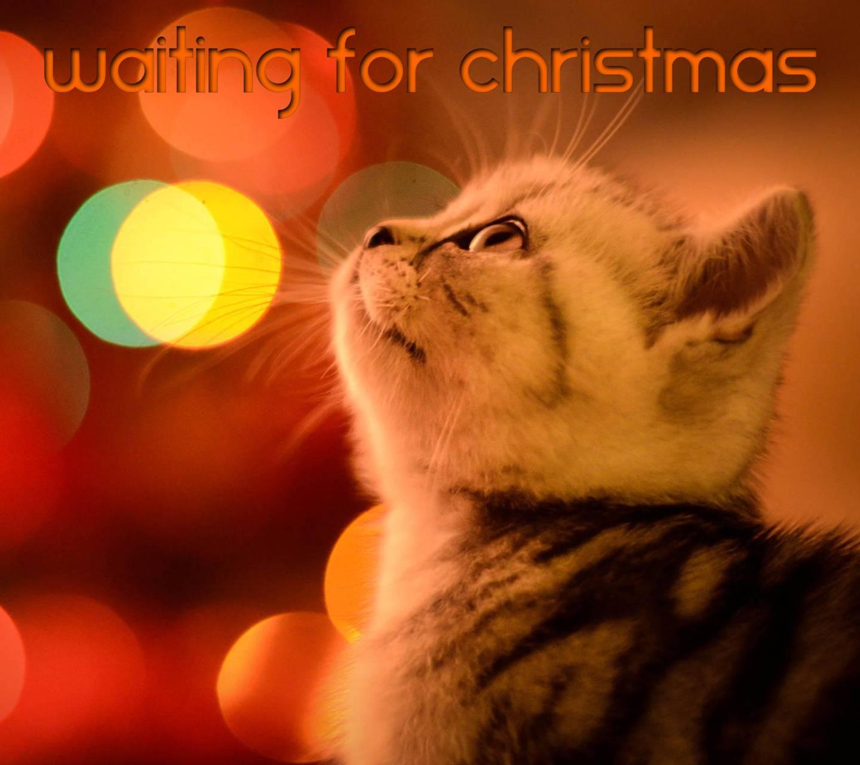 Waiting Christmas