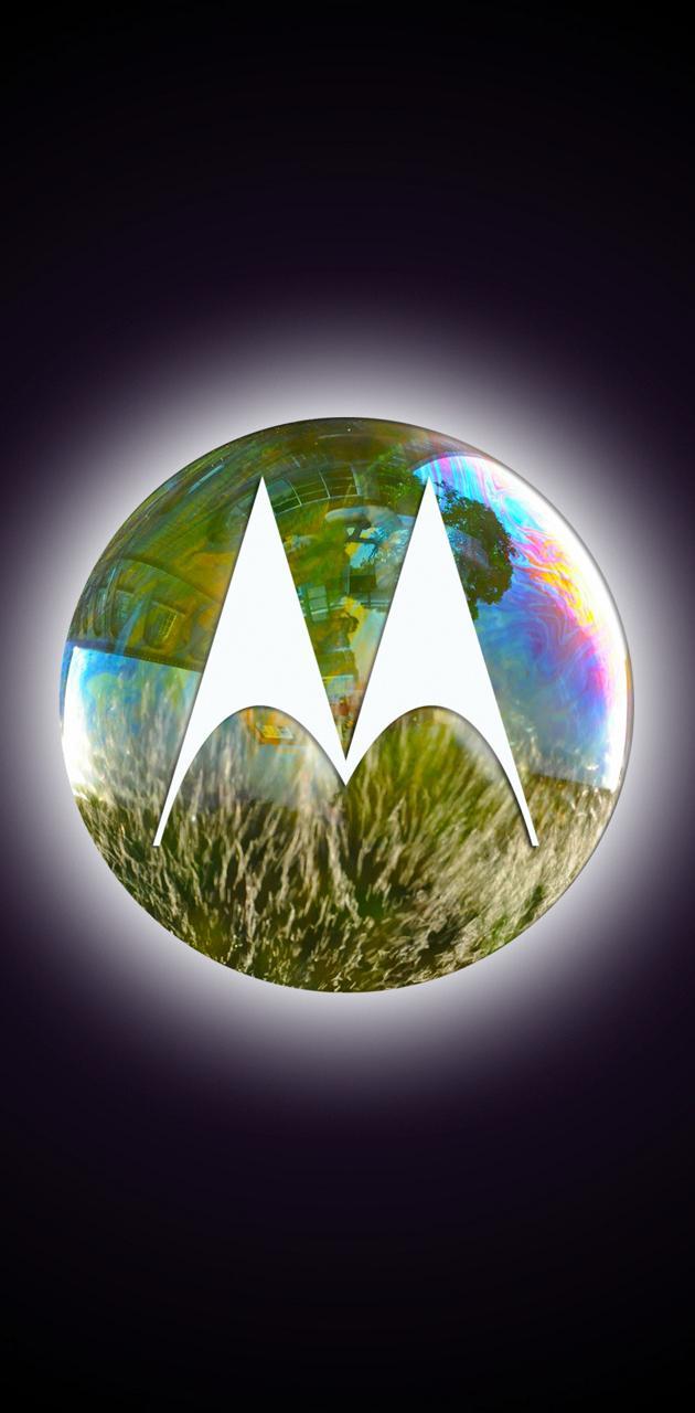 Motorola Shine