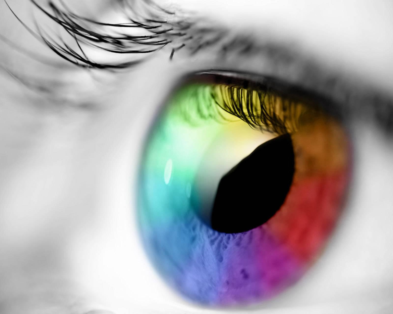 Eye Palette