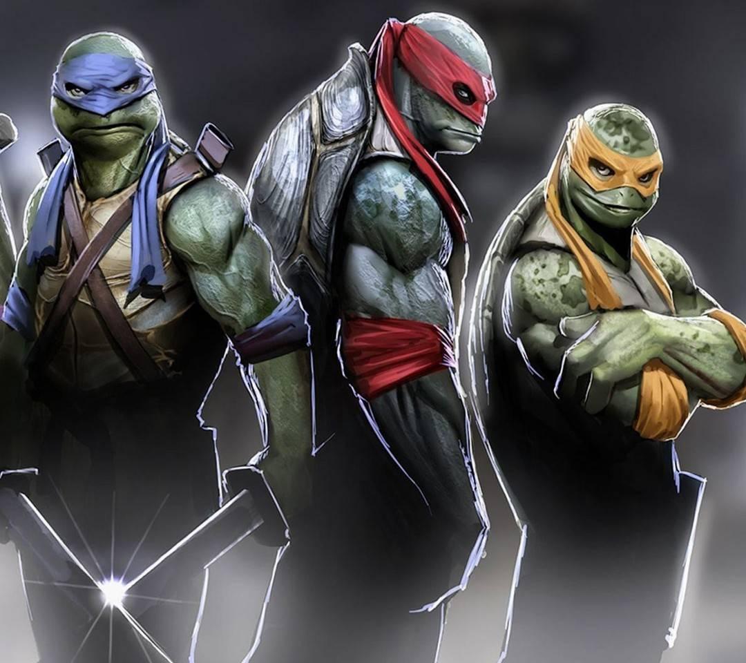 Ninja Turtles 2014