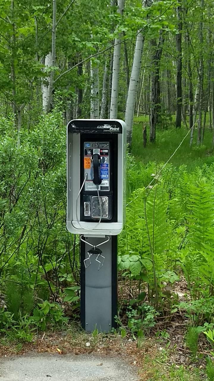 The last payphone