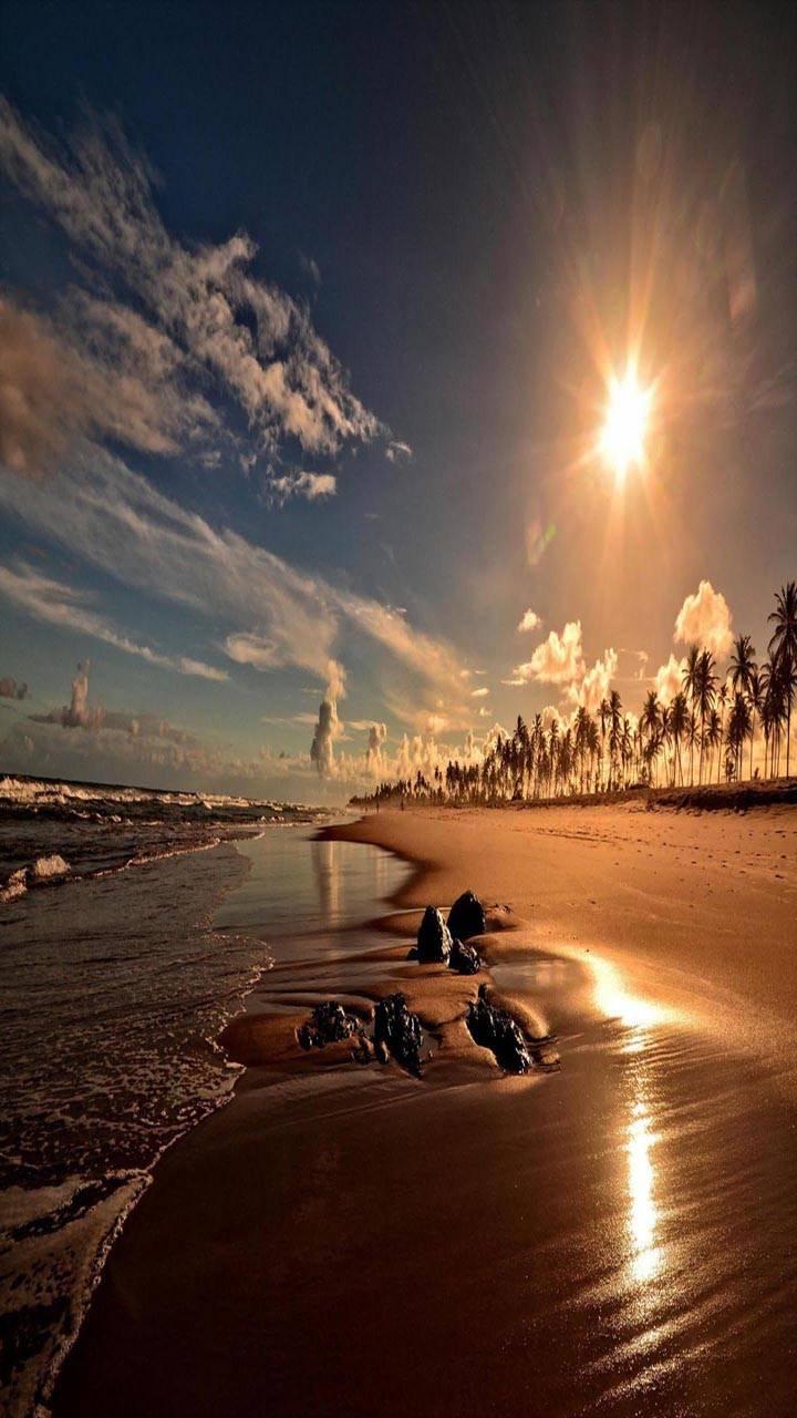 Sunset Coast Beach