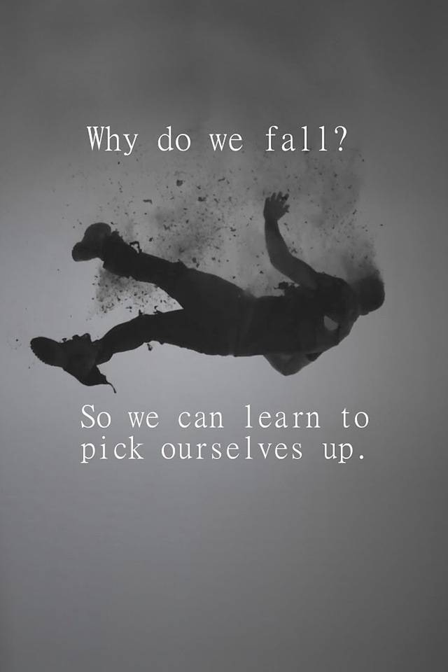 We Fall We Learn