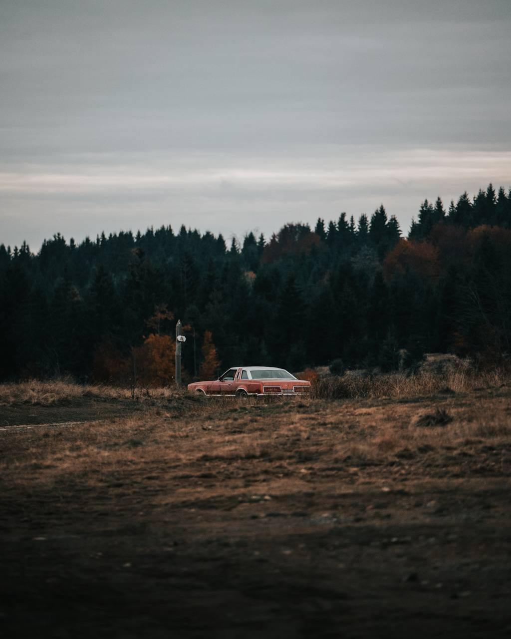 Nature car