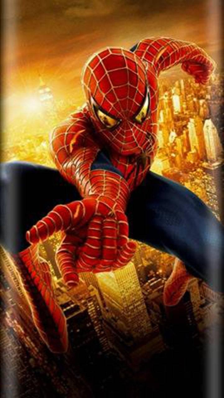 Spider edge
