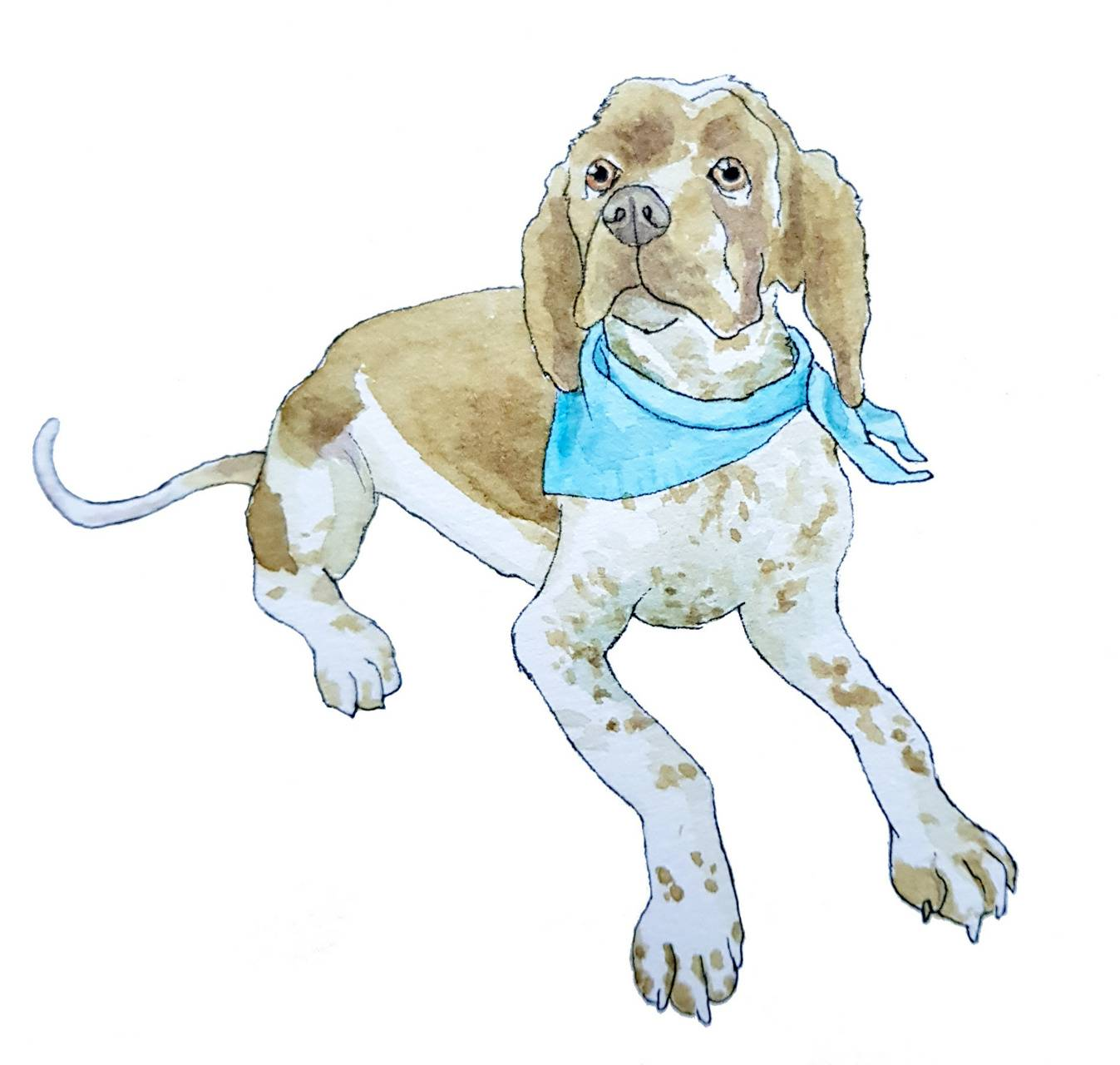 Neckerchief Dog