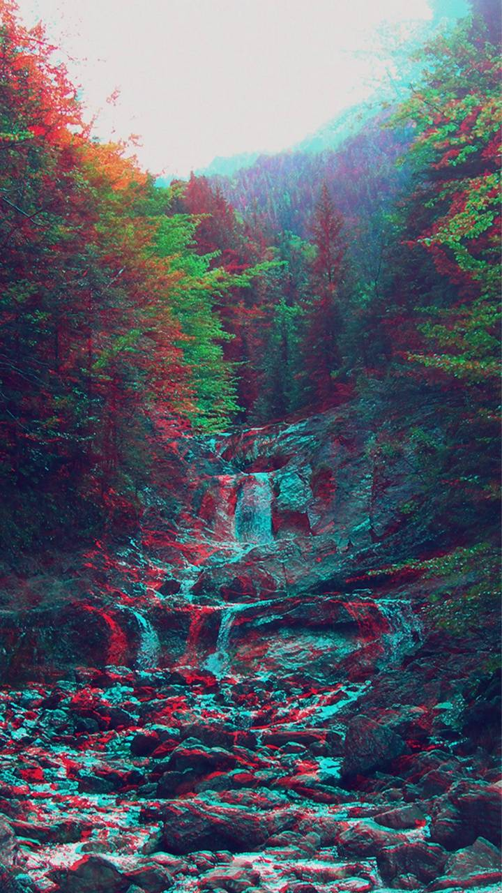 Trippy forest