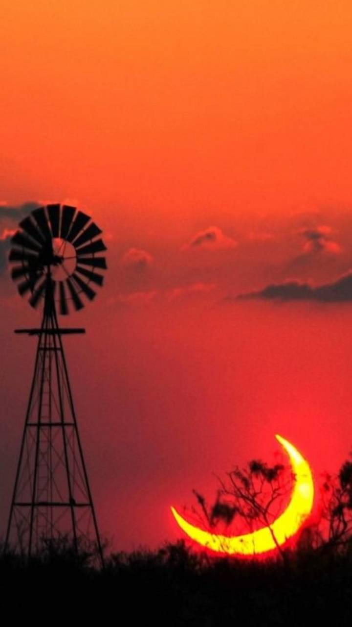 Solar Eclispe Texas