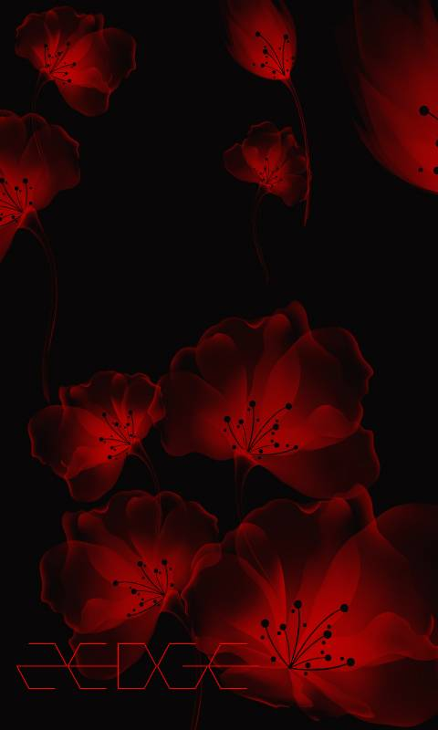 Red Abstract Flowers