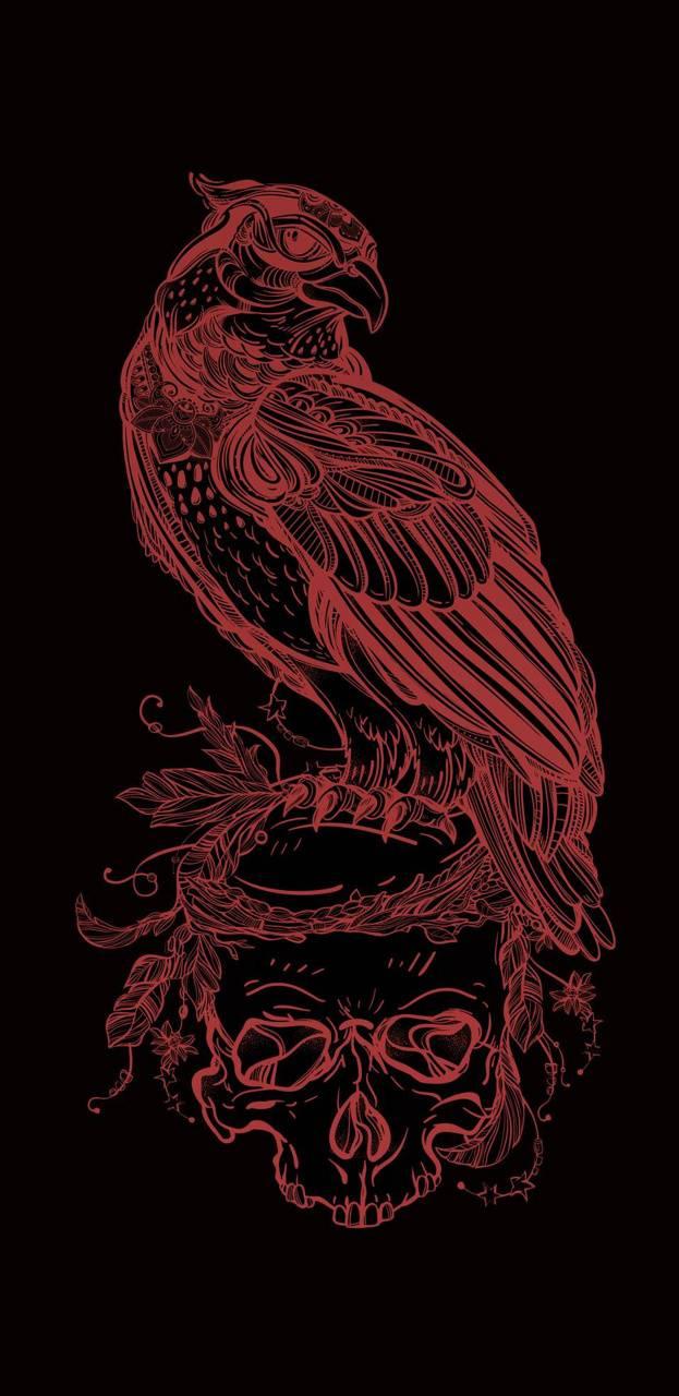 Phoenix on Skull
