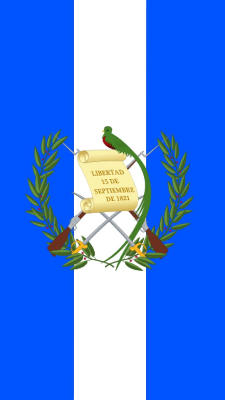 Bandera Guate