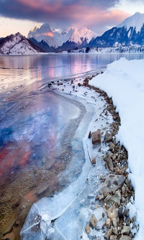 Nature at Winter