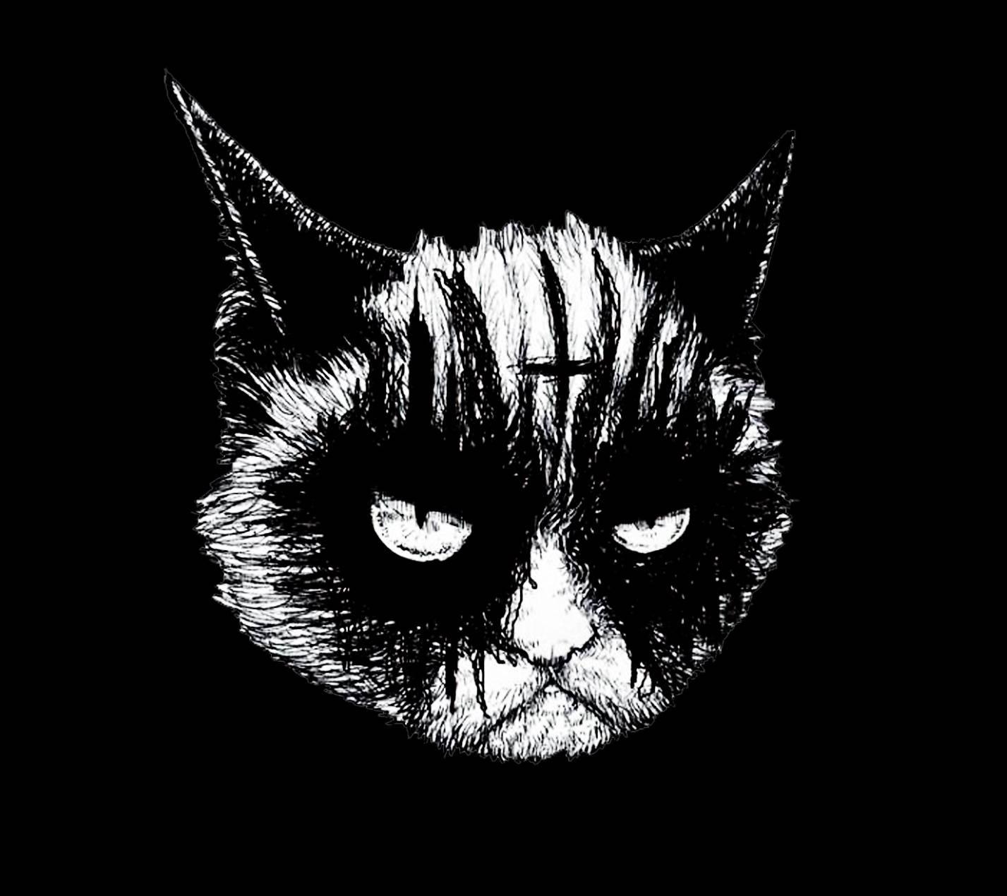 Black Metal Cat Wallpaper By Omargenis 23 Free On Zedge