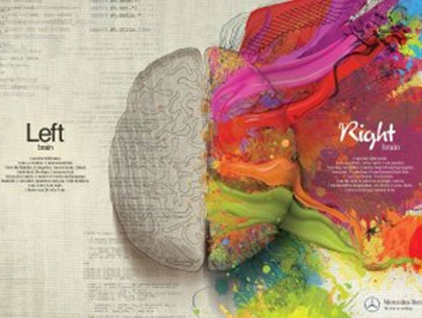 Left Brain And Right