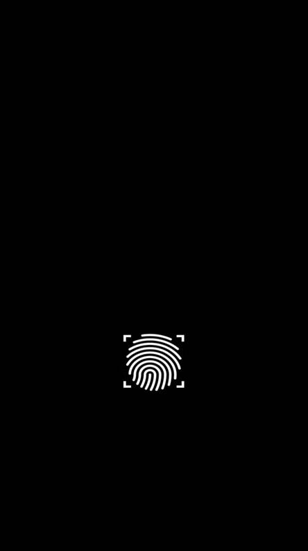 Simple fingerprint