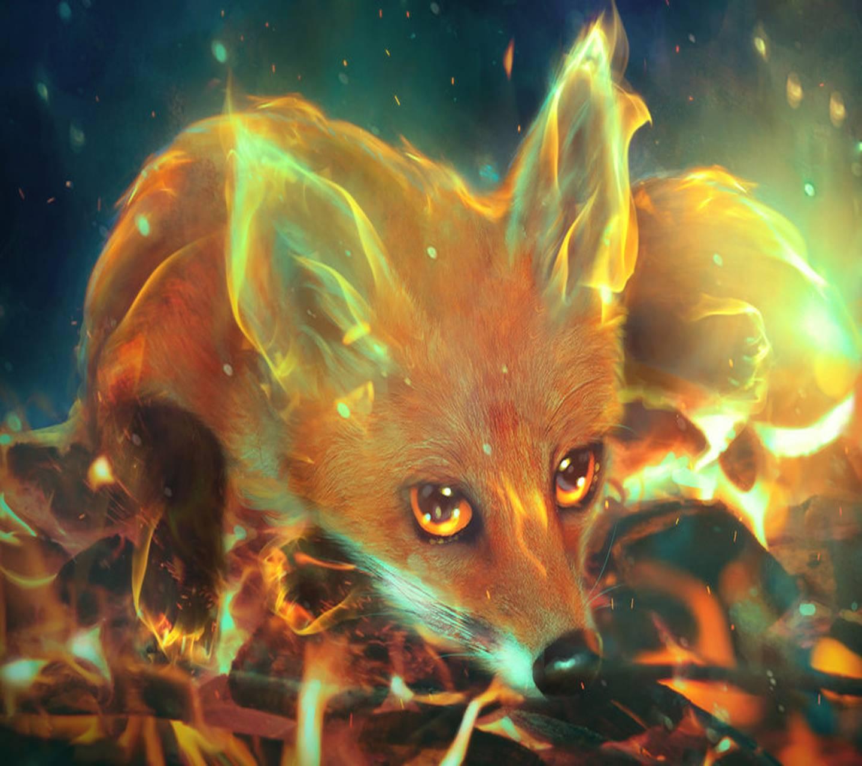 twitter video downloader firefox