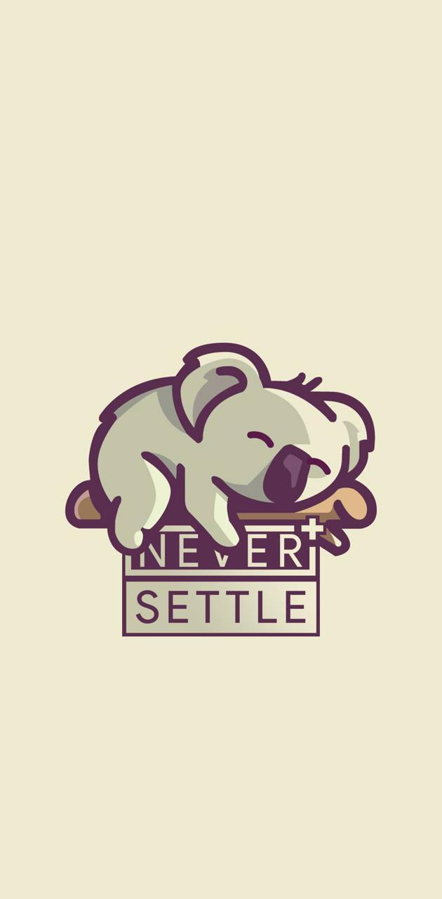 NEVER SETTLE WP 6