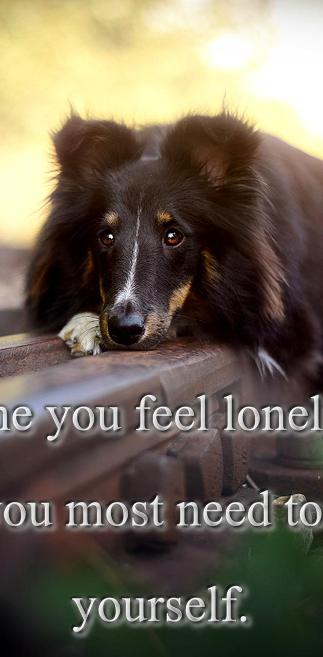 Feel Lonely