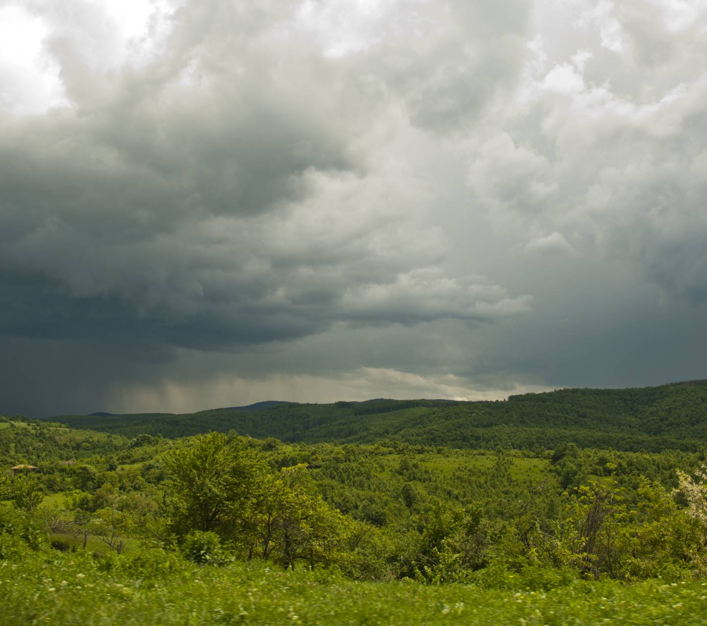 Bulgarian hills
