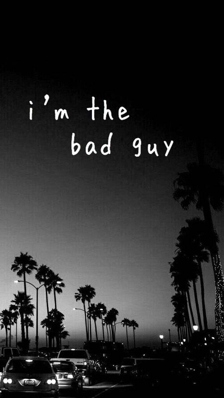 I am the bad guy