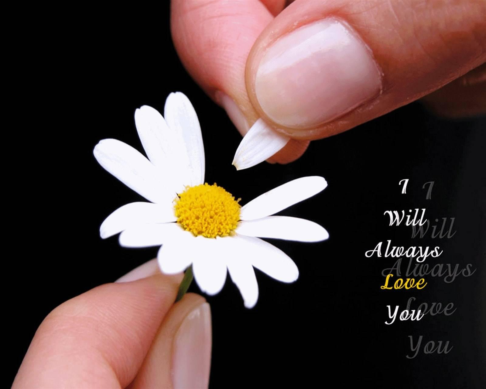 I will Always