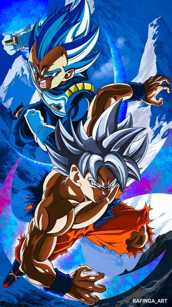 SSB Vegeta X UI Goku wallpaper by