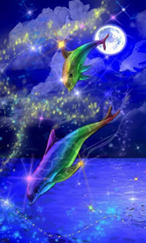 Dolphine Rainbow