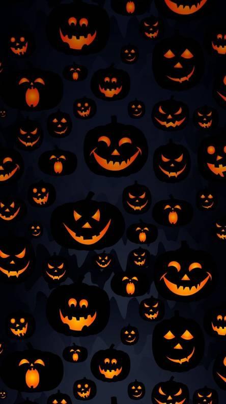 Pumpkin Wallpaper
