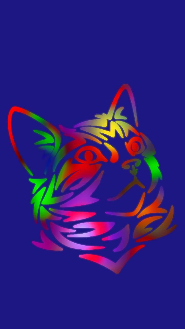 color cat 03