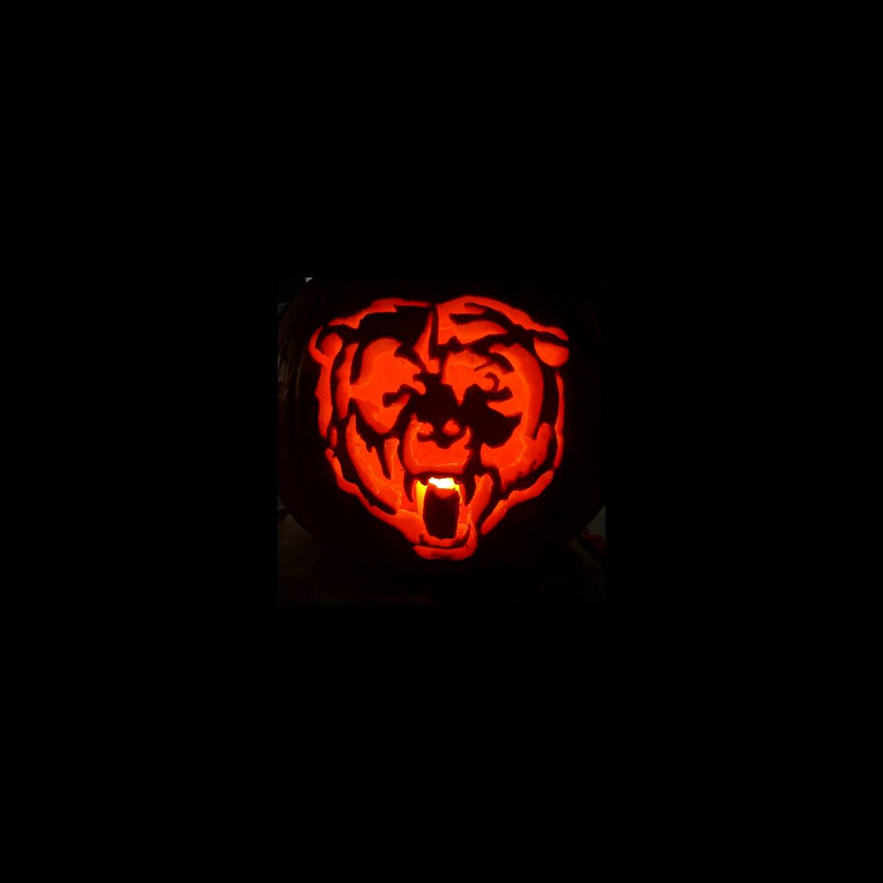 Bears Pumpkin