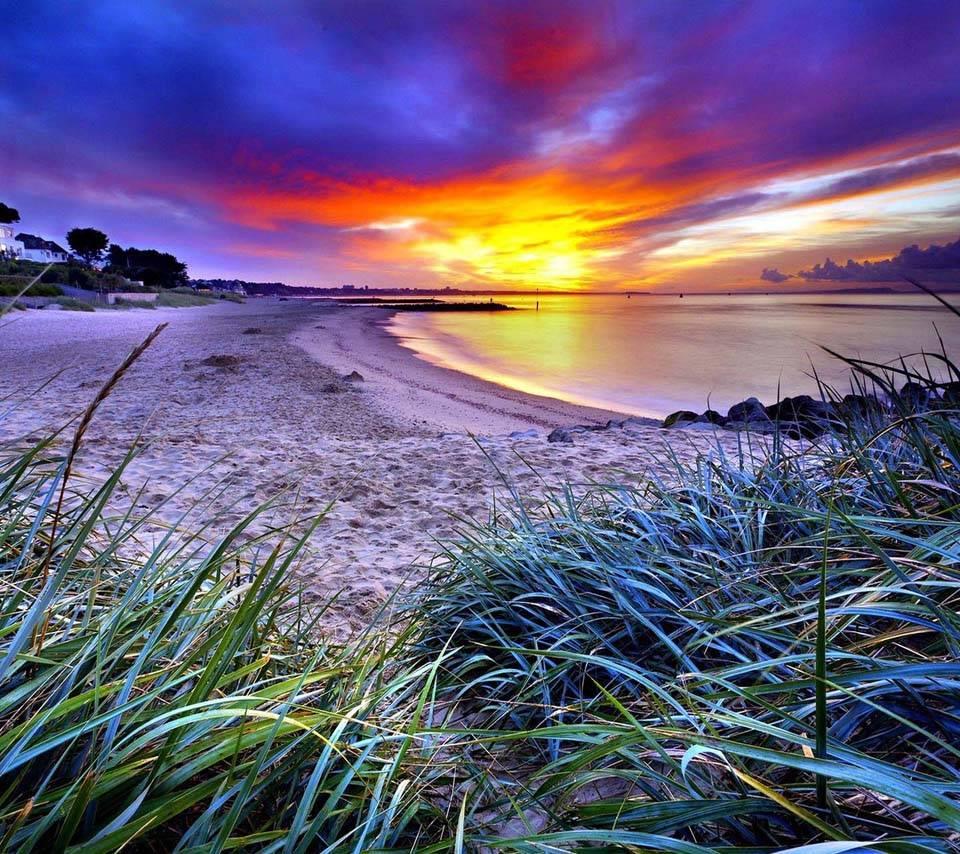 Beach sand Coast