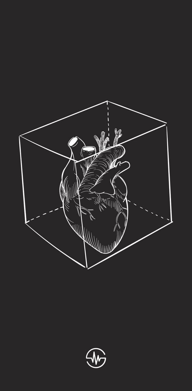 Heart -Myrua