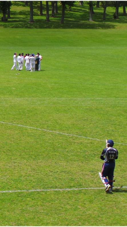 Cricket kaka