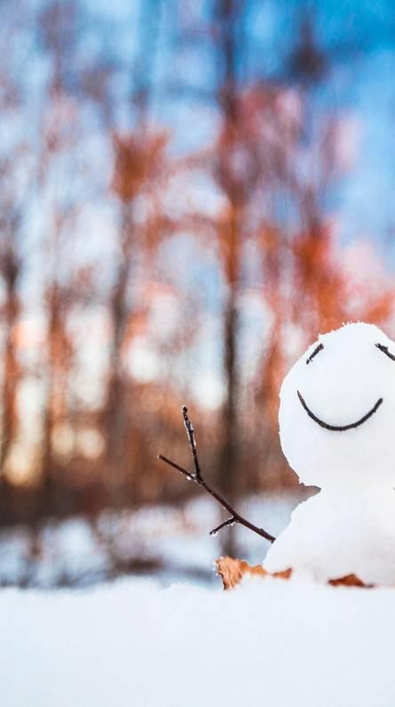 Happy Snowman Wallpapers