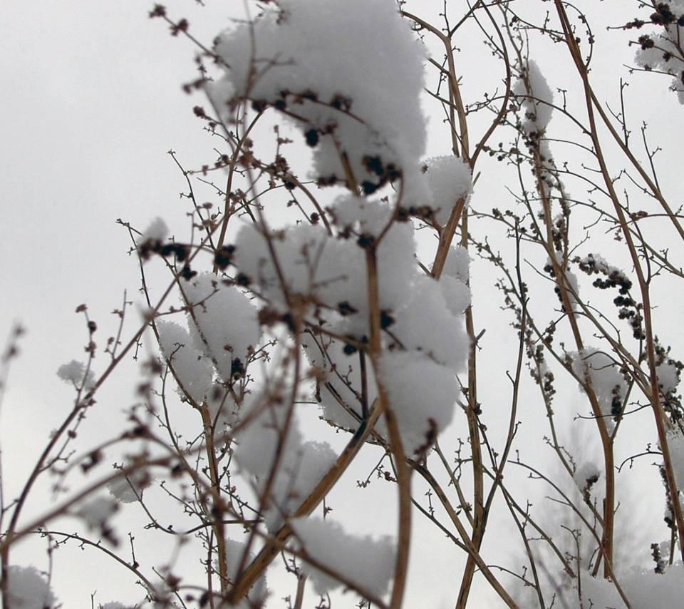 Snow Places 36