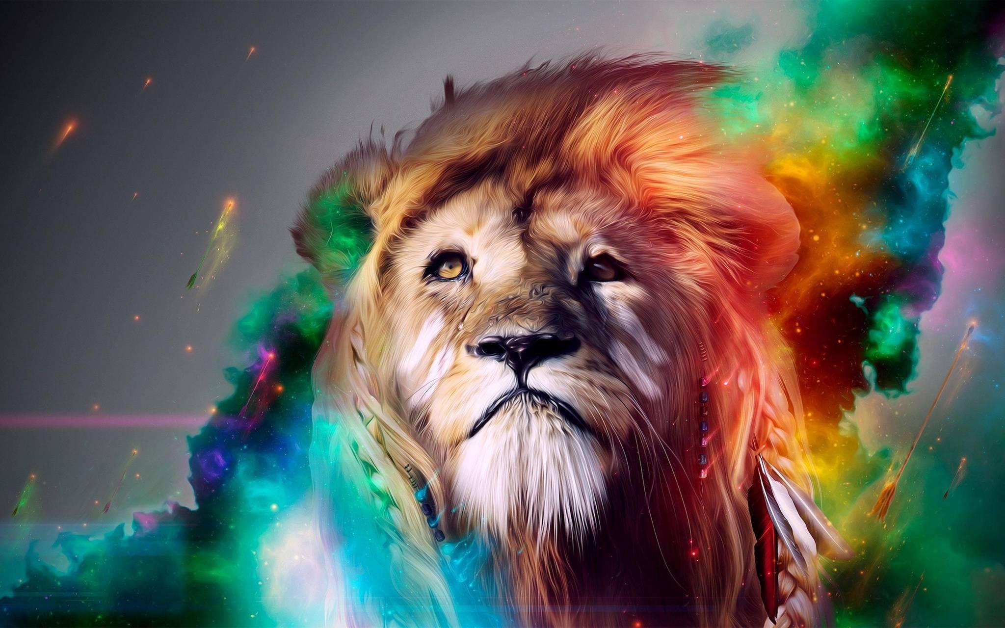 Colorfull Tiger 4K