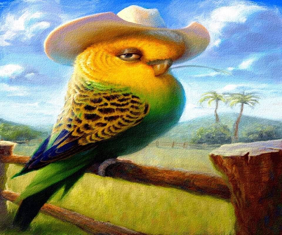 Cowboy Birdy